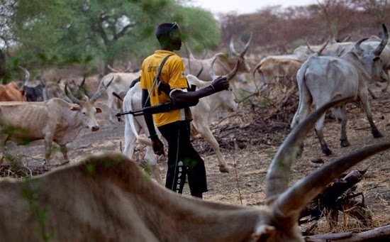 Benin Republic bans Fulani herdsmen from entering country, Benin Republic bans Fulani herdsmen from entering country, Premium News24