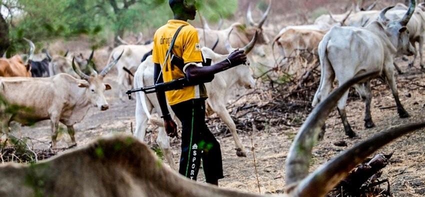 Many declared missing as herdsmen strike in Benue