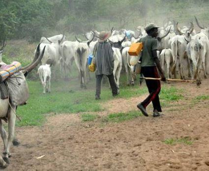 Photo of Nigerian police confirm the killing of six farmers In Zamfara State