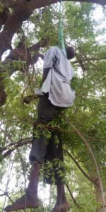 Gov. Shettima's steward commits suicide inside govt. house