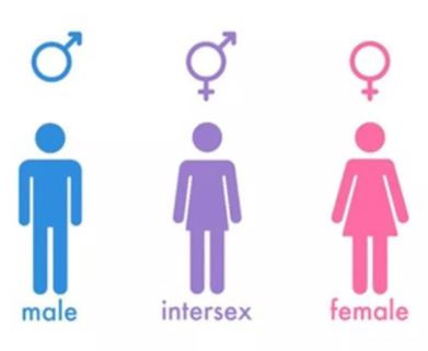 Photo of Kenya to include 'intersex' category along with male and female in the section on gender in next month's census
