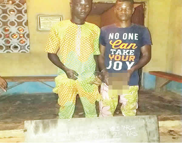 Photo of Man catches suspected ritualists with mother's skull in Ogun State