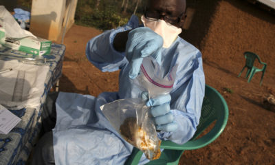 19 persons die of Lassa fever in Bauchi