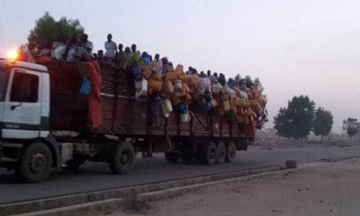 Ondo govt sends back almajiris from Sokoto