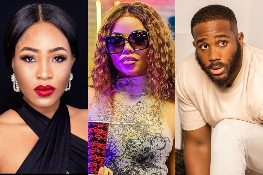 BBNaija 2020: Nengi blames herself for Erica and Kiddwaya break up