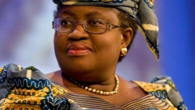 European Parliament Endorses Okonjo-Iweala For WTO Job, European Parliament Endorses Okonjo-Iweala For WTO Job, Premium News24