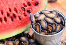 Photo of Health Benefits of Watermelon Seeds